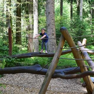 Holzspinne im Kinderwald - viel Spaß beim Entdecken!