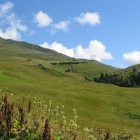 Etappe 19: Strassberg im Fondei