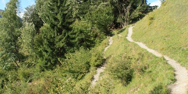 Etappe 13: Wanderweg ob Filisur Richtung Schönboden