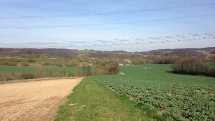 Felder zw. Mühlhausen und Tairnbach