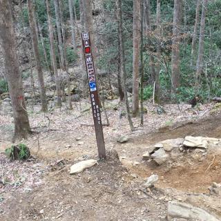 Start Daniel Ridge Trail