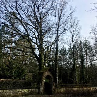 Eingang zum Friedhof Grunewald-Forst