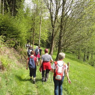 Frühlingswanderung in Grünhainichen