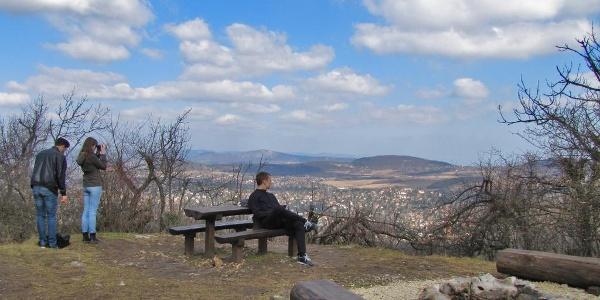 Kilátópont a Nagy-Hárs-hegyen