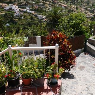 Jardines de flores en Lomo del Balo