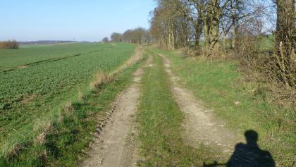 Feldweg direkt hinter Gramzow in Richtung Blankenburg