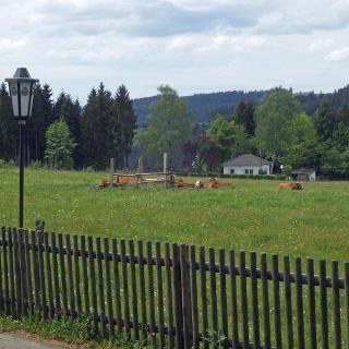Waldhaus Föckinghausen - Die Weide.