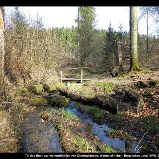 Tal des Breidbaches nordöstlich von Osminghausen