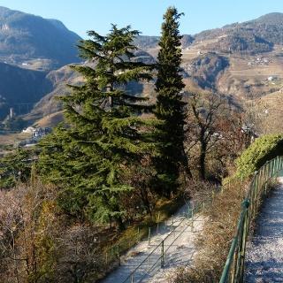 """Il lato """"mediterraneo"""" di Bolzano"""