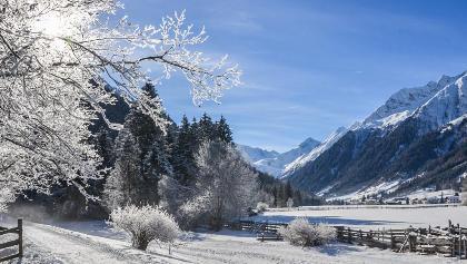Loipe und Winterwanderweg in Gschnitz
