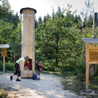 Erlebnisstation am Kneipp Waldweg