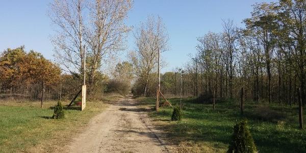 Pici Paci porta (AKPH_09)