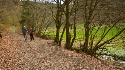 Weg im oberen Forbachtal