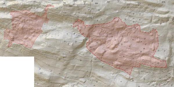 Denkmalschutzgebiet Bartholomäberg Karte thematisch