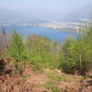Blick hinüber nach Ascona