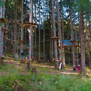 KLetterwald am Ettwieser Weiher