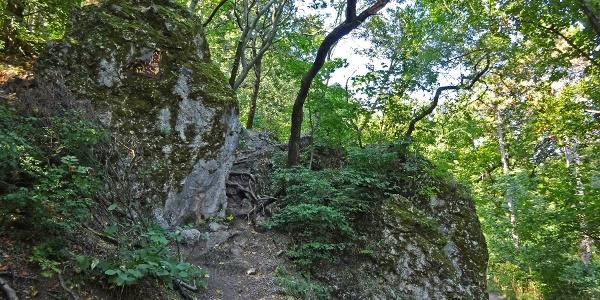 Guckler-szikla