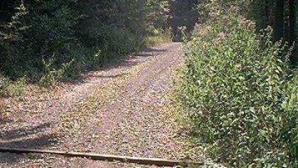 Weg an der Hoppbach