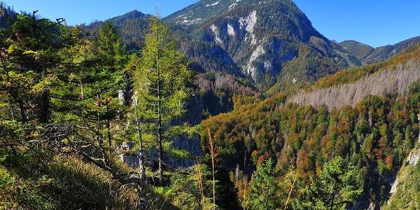 Großer Größtenberg im Nationalpark Kalkalpen © Sieghartsleitner