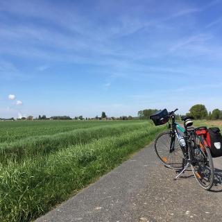 Farmland after Saint Patrice