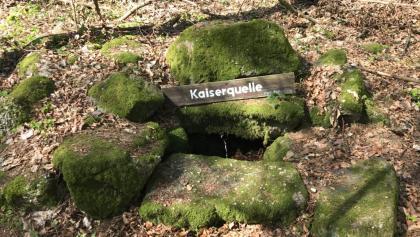 Kaiserbrunnen auf dem Weg zum Selberg