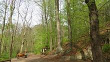 SaaleHorizontale Etappe 1 - Von Jena (Lobeda) nach Ziegenhain