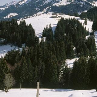 Lanzenbach