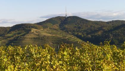 Staffelberghütte