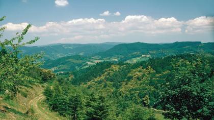 Berglehütte