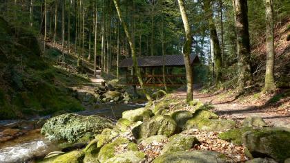 Littersbach-Mündung