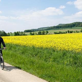Auf dem Radweg am Fuße des Hesselberg von Gerolfingen nach Röckingen