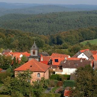 Burgholz