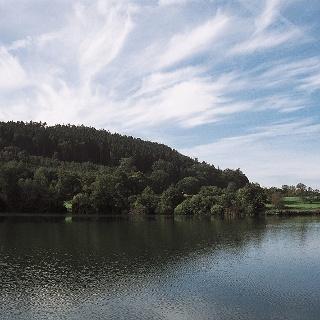 Steißlinger See