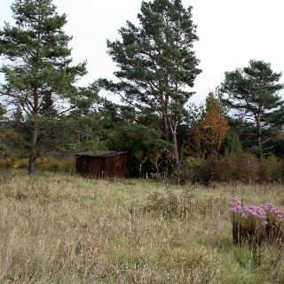 Sauberghütte