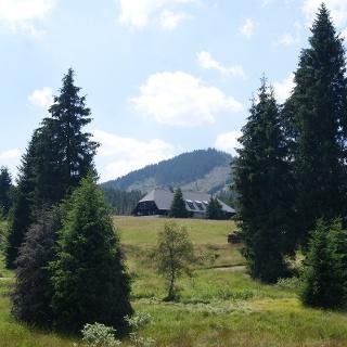 Hammerbachtal