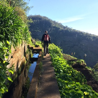 Following the 'Levada dos Tornos' through rural Madeira