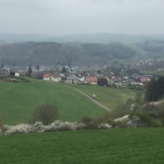 Blick auf den Höhberg
