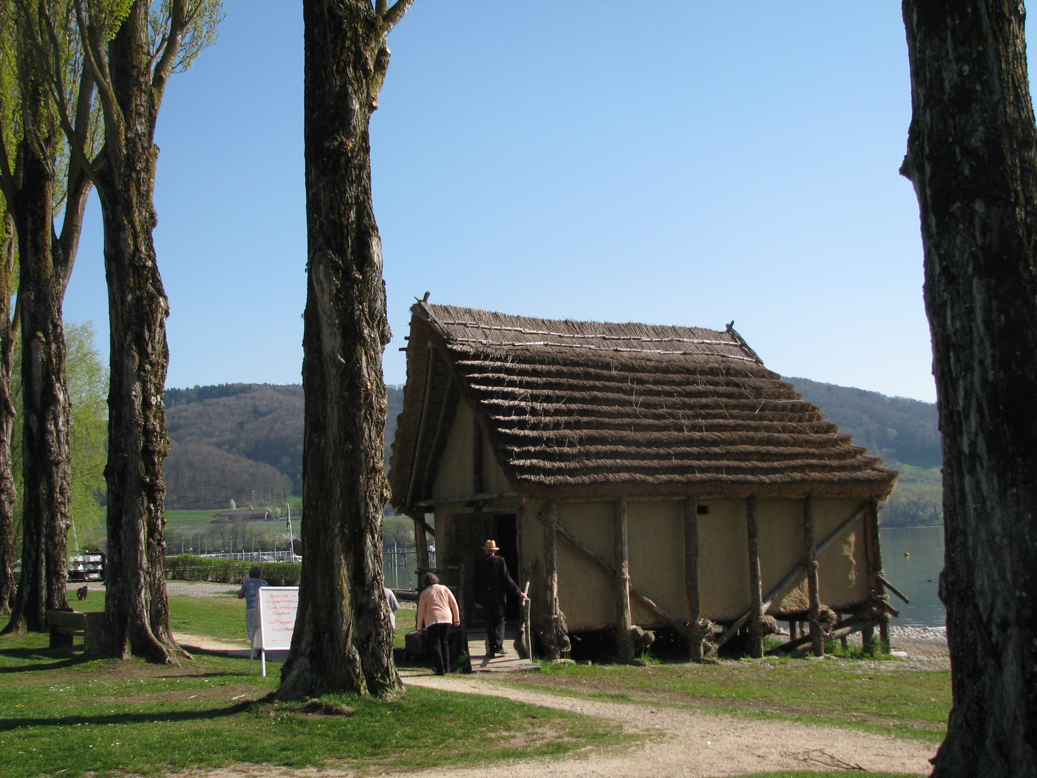 Steinzeithaus in Wangen