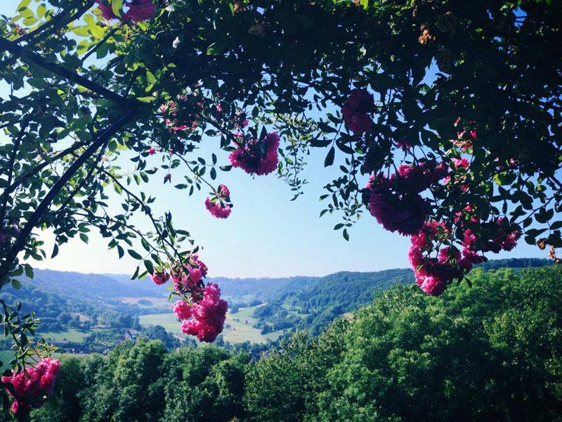 Blick auf das Jagsttal  - @ Autor: Beate Philipp  - © Quelle: Schlosscafé Langenburg