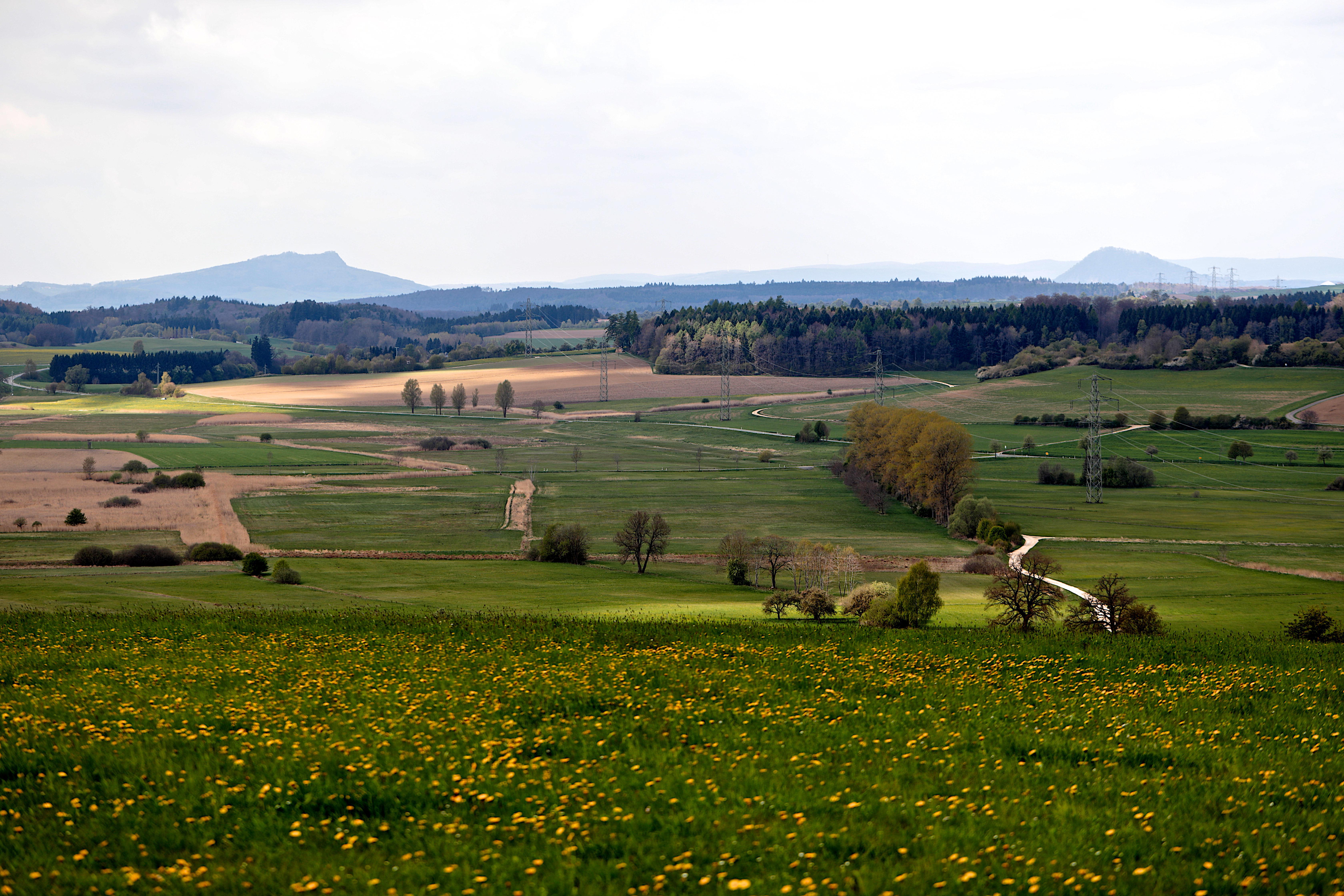 Hegauvulkane und Moor