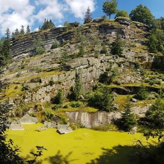 Albertsbruch am Steinbruchweg, hinten der Epprechtstein-Gipfel