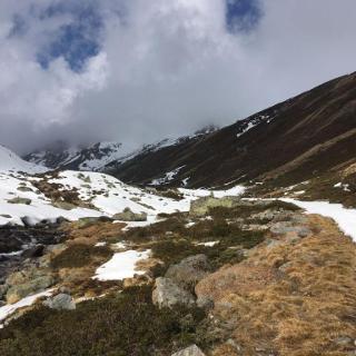 kurz nach der Nassereinalpe, auf ca. 2200m
