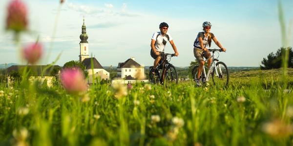 Tauern-, Mozart- und Salzkammergut-Radweg bei Bergheim