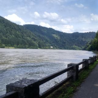 Donau in Oberösterreich