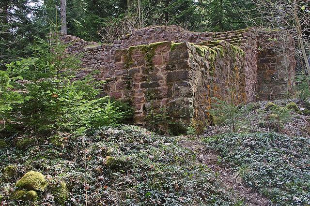 Waldachtaler Rundwanderweg 9 / Stilles Waldachtal
