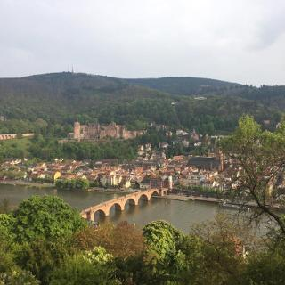 Castle of Heidelberg