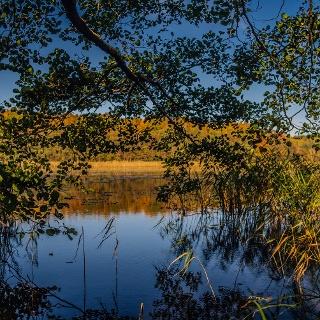 Der Garzer See
