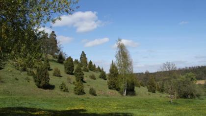 Heidefläche unterhalb Lehenweiler