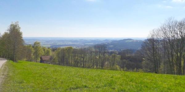 Blick zur Donauebene vor Vornwald