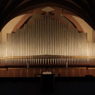 Eule-Orgel Nicolaikirche Döbeln